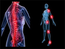 Point important du rayonnement infrarouge sur le corps humain